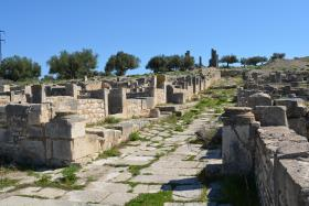 Thignica (Aïn Tounga, Tunisia)